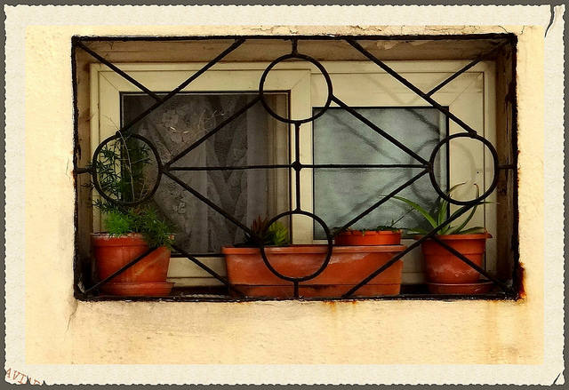 Window in Gozo by Judy
