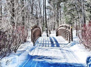 Shadows in the Snow - Ken Long